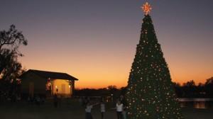 Christmas tree lighting pic