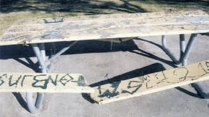 vandalism pic