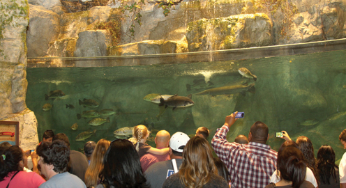 Grandest Of Openings Bass Pro Shops San Benito News