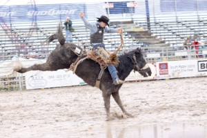 PRCA Rodeo pic3