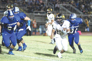 PERFECT WIN: Tarpons too much for feisty Cats; score 10-0 season
