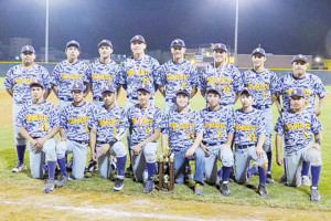 'Hounds runners up at baseball tourney