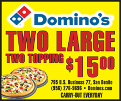 dominoes two large pizza