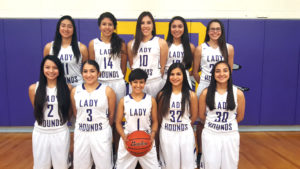 With Bi-District title wrapped up, 'Lady Hounds have sights set on Area Championship
