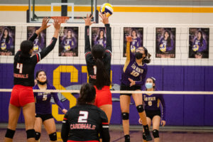 Lady 'Hounds suffer a tough loss against the Lady Cardinals